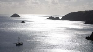 Re-introducing our Channel Islands Adventure Cruises!